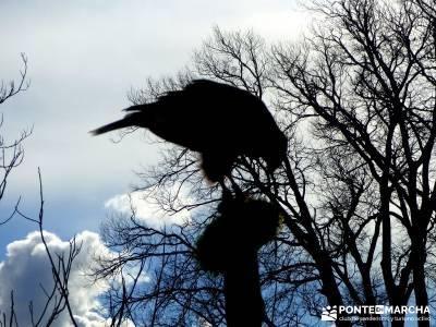 Parque Natural Monasterio de Piedra; Caminar rápido; Caminata rápida;viajes de fines de semana